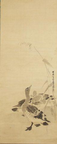 Kanō Tan'yū, Oche